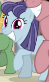 Blueberry Frosting Earth pony ID S5E1
