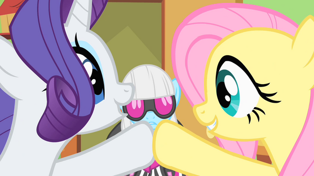 File:Rarity and Fluttershy high-hoof S1E20.png