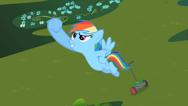File:Rainbow Dash's Victory S2E8.png