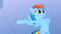 Rainbow Dash somepony here S2E8