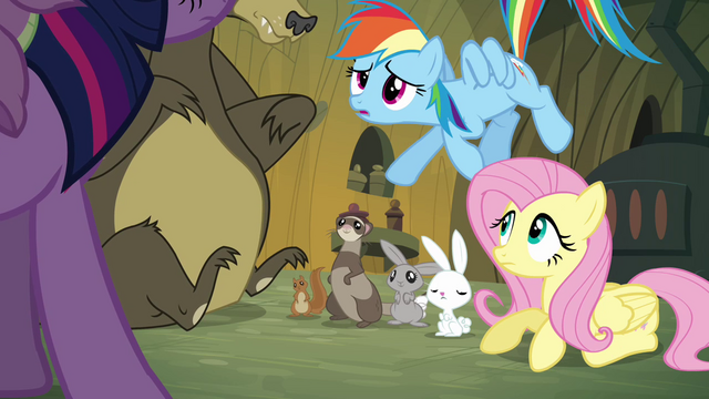 File:Rainbow Dash 'Fluttershy spoke with the woodland critters' S3E03.png