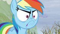 Rainbow's super angry face S5E5