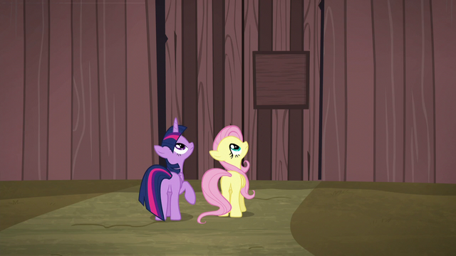 File:Twilight and Fluttershy look to top of gate S5E23.png