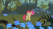 Apple Bloom hears Applejack call her S1E09