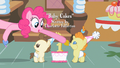 Pinkie Pie to Pumpkin Cake S2E13.png