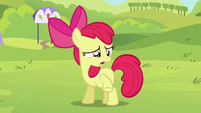 Apple Bloom wants to skip the obstacle course S5E17