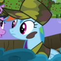 Rainbow Dash camo ID S2E21