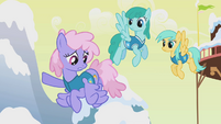 Rainbowshine says Ditzy went north S1E11