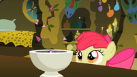 Apple Bloom looking at tiny petals entering the bowl S2E06