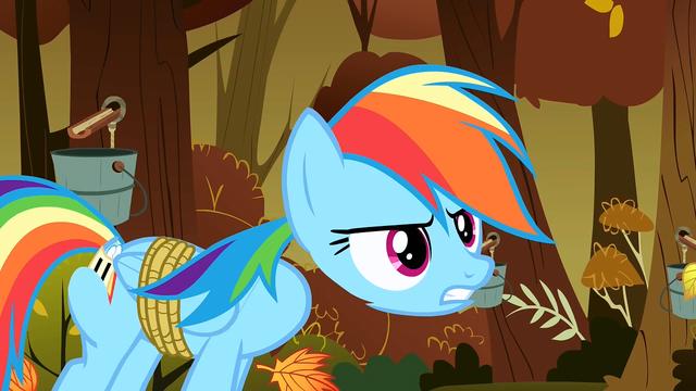 File:Rainbow Dash's detached head S1E13.png