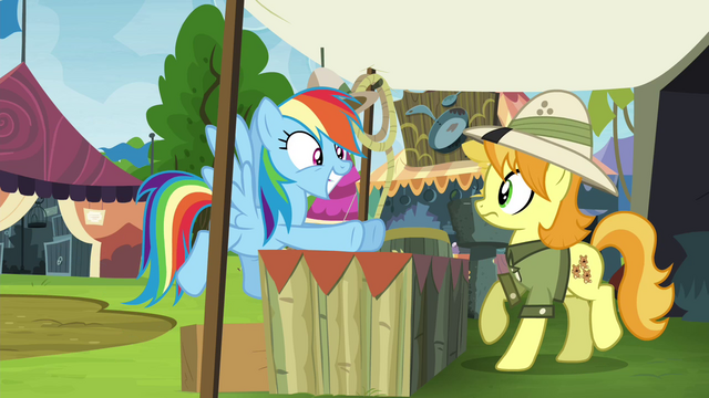 """File:Rainbow Dash """"now where's my book?"""" S4E22.png"""