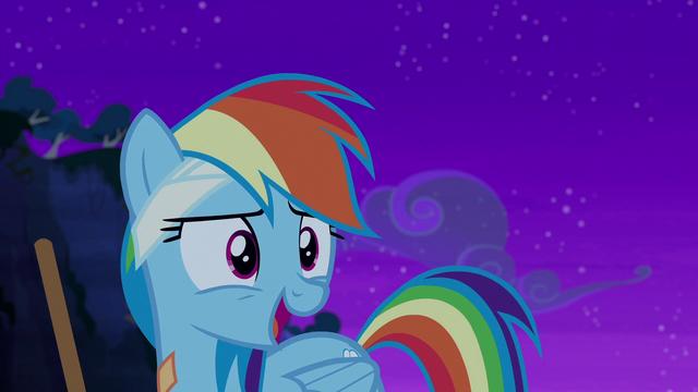 "File:Rainbow Dash ""duh!"" S6E7.png"