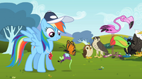 Butterfly carrying toy mouse back to Rainbow Dash S2E07