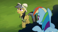 Daring Do exasperated sigh S4E04