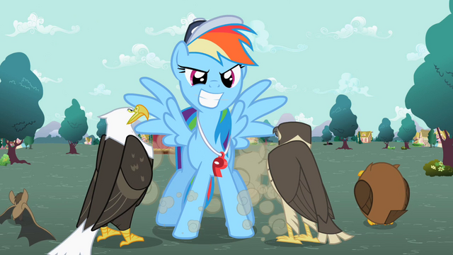 File:Rainbow Dash in front of the flyers S2E07.png
