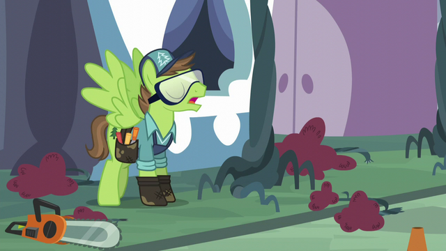 "File:Horticultural Pegasus ""I got my orders"" S5E10.png"