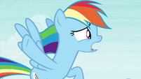 "Rainbow Dash ""slow down the breeze"" S4E16"