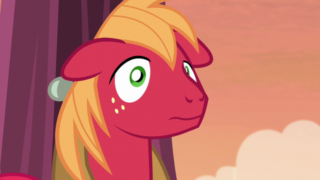 File:Big McIntosh looking surprised S5E17.png