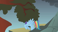Rainbow hovers under a tree branch S1E07