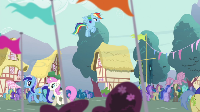 File:Rainbow Dash hovering over the crowd S4E16.png