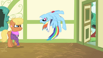 Rainbow Dash stops herself S4E05