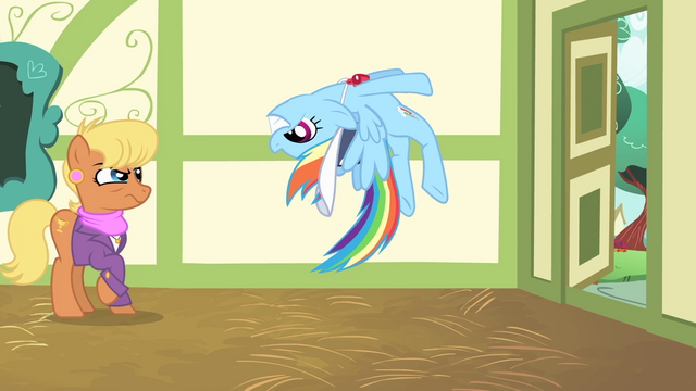 File:Rainbow Dash stops herself S4E05.png