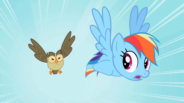 File:Rainbow Dash Owlowiscious 1 S02E07.png