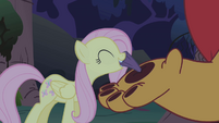 Fluttershy pulling the thorn S1E02