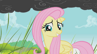 Fluttershy takes that as a yes S01E07
