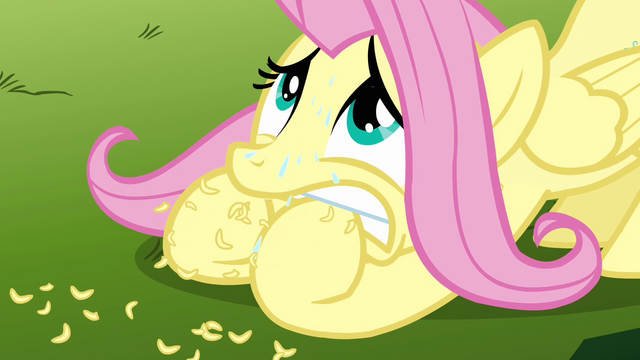 File:Fluttershy chewing on her hoofs S3E5.png