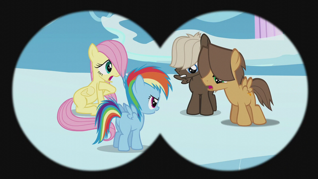 File:Rainbow Dash challenges the Boy Bullies S5E25.png