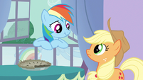 Rainbow Dash question honesty S3E9