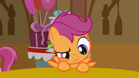 Scootaloo thinking S1E12