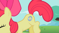 Apple Bloom showing cutie mark S2E06.png