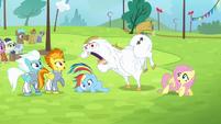 Bulk shouts at Rainbow Dash S4E10
