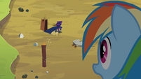 Rainbow Dash looking at Mare Do Well S2E08