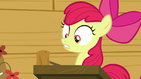 Apple Bloom opens her eyes and look at her friends S6E4