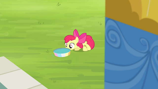 File:Apple Bloom pushing pan of water into position S4E20.png