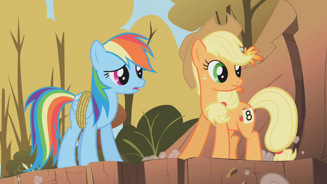 File:Applejack and Rainbow Dash2 S01E13.png