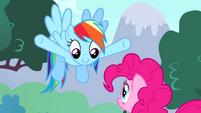 "Rainbow ""you're Ponyville's permanent party pony"" S4E12"