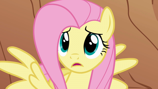 "File:Fluttershy ""But why?"" S1E21.png"