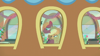 AJ and Big Mac on the Ponyville train S5E20