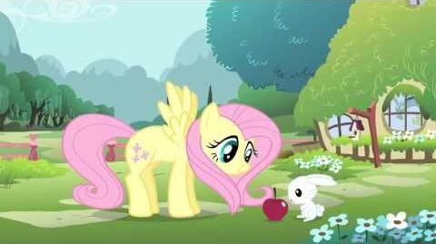 My Little Pony Friendship is Magic (S2-S5) - Intro (Indonesian)