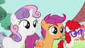Sweetie Belle, Scootaloo and Twist watching S2E06.png