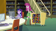 Twilight and Cheerilee in the library EG