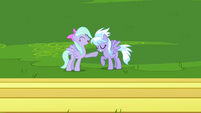 Cloudchaser and Flitter laughing S2E22