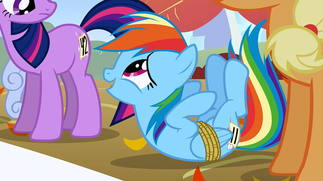 File:Rainbow flipped S01E13.png