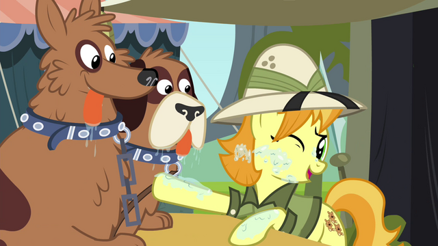 File:Daring Do collector stops orthros from licking her S4E22.png