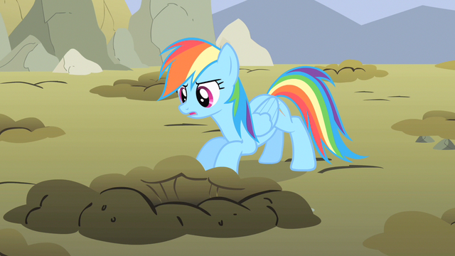 File:Rainbow Dash take a peek S1E19.png