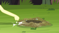 Fluttershy knocks on the ground next to gopher hole EG4